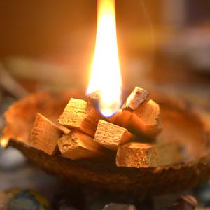 Magickal Aromatherapy: Palo Santo